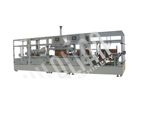 CZF automatic forming carton packing sealing production line