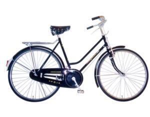 Classic Bike QF2070