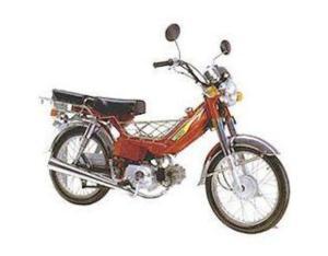 Motorcycles XF30E