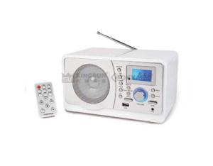 DIGITAL FM WOODEN RADIO MR-895