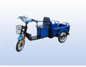 Plate load king electric motor car