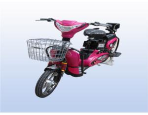 Golden Jasmine two wheel electric vehicle