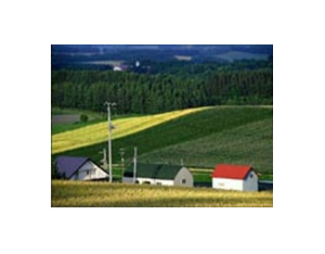 Farmland water and agricultural development