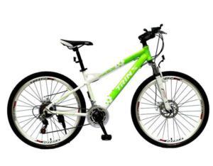 Bicycle MA1.8DG