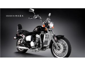 Motorcycles DD250E-9a