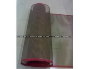 PTFE Microwave Drying Mesh Belt