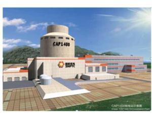 AP / CAP nuclear power plant design