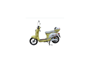 orangeElectric Bike
