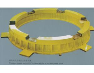 Nuclear power plant reactor pressure vessel support