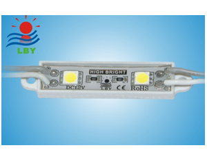 NO:CH452F   Name:2-SMD 5050 waterproof module