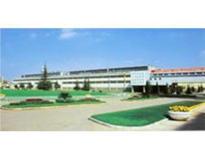 Hongta plant