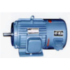 YVP series three-phase frequency controlled asynchronous motor