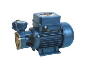 Micro Vortex Pump(DKF2)