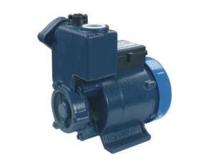 Self-priming Vortex Pump(DGP125)