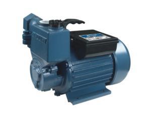 Vortex Pump(25zb)