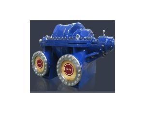 Double suction pump series DFMS