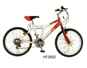 bicycle JY