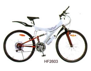 bicycle KU87