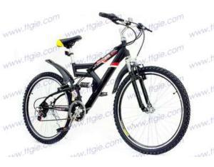 MOUNTAIN BICYCLE mountain12