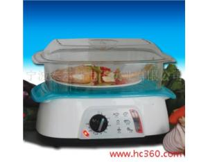Electric steamer 2