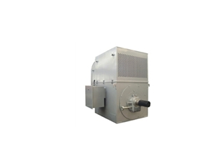 YTM/YMPS Asynchronous Motor for Coal―grinder