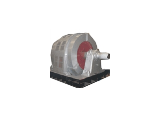 T Series Synchronous Motor