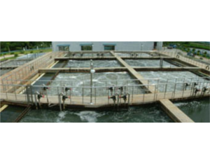 Wastewater treatment projects