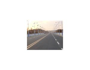 Solar Street Light LD1