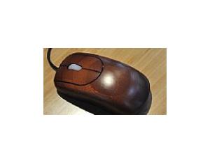 Sail teaser mouse 1
