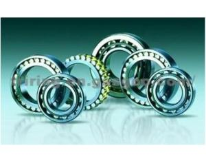 Double Row Cylindrical Roller Bearing Byd/ Flyer