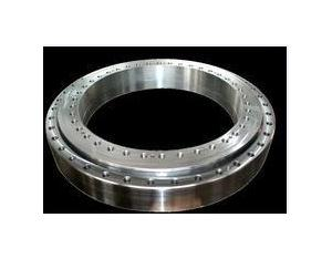 16304001 Slewing Bearing application and maintenance