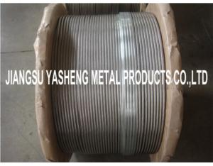 AISI 316L Stainless Steel Wire Rope 1X19