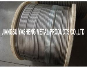 SS316L Stainless Steel Wire Rope 1x19