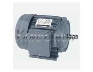 capacitor electric motors