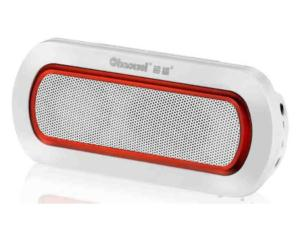 MP3 Player with FM Radio (CW8351)