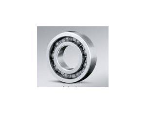 Cylindrical Roller Bearing NJ2228