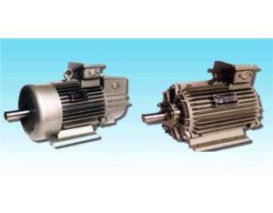 YZ.YZR  motor