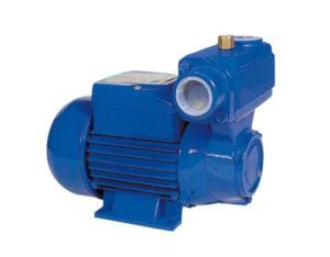 Water Pump DSC_2493