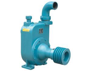agricultural spray pump-80BPZ-65