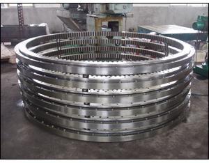 Slewing Ring BearingYRT850