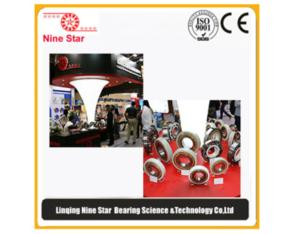 6316m.c3.J20C insulated bearing manufacturer