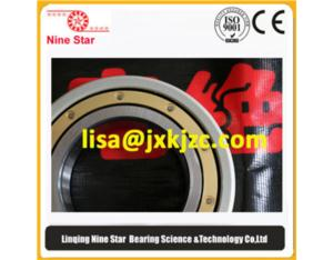 Electrically Insulated bearing 6312MC3VL0241