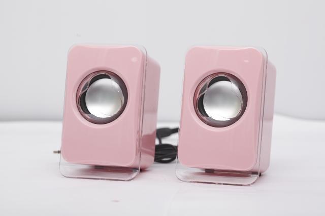 mini speaker dl-sd101