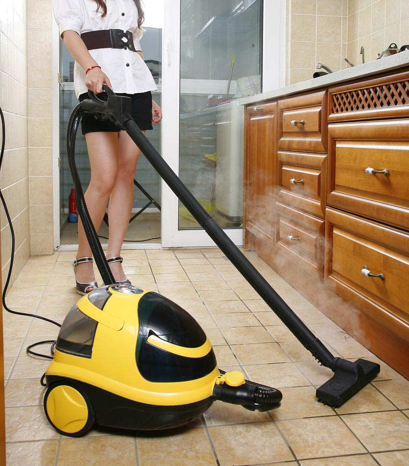 Homey Steam Vacuum Cleaner With Iron