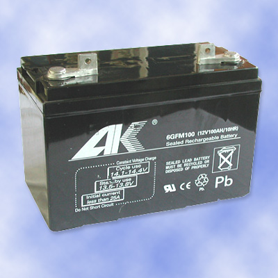 Maintenance Free Battery for Automobile (6GFM100 12V100AH)