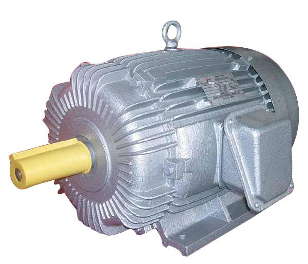 Yo2 Three Phase Induction Motor Yaeef 160l 4