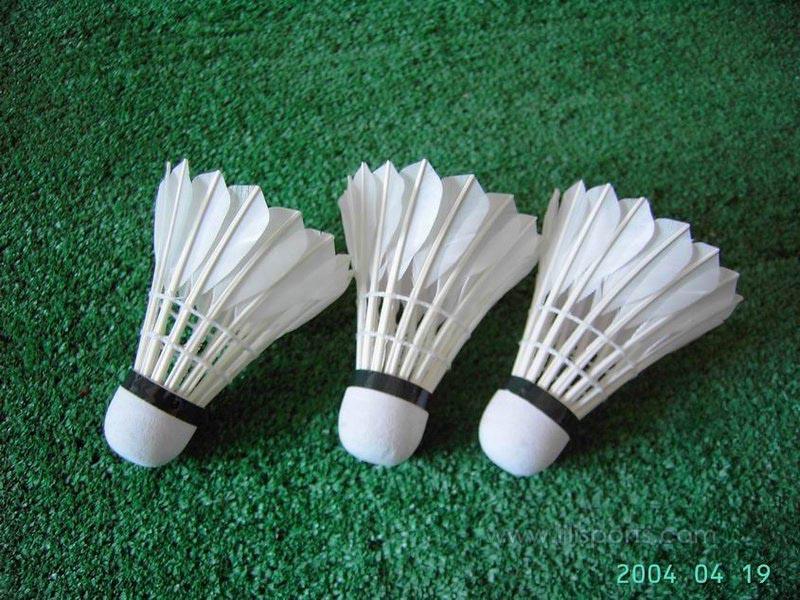 Schnellster Ball Badminton