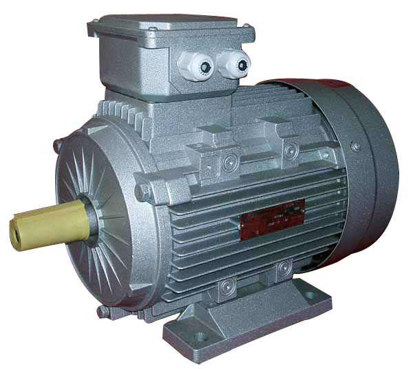 CE) MS 3-Phase Induction Motor (MS-112M-2)