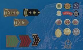 The rank insignia